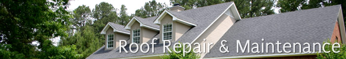 Roofing Services in MI, including Sterling Heights, Farmington & Troy.