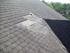 roof repair in Michigan